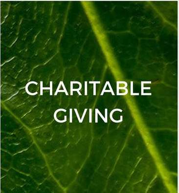chartiable-giving-sustainable-jungle