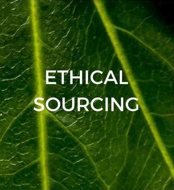 ethical-sourcing-sustainable-jungle
