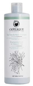 Odylique herb shampoo sustainable jungle