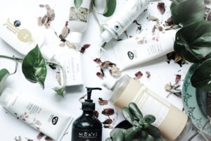 Cruelty free and vegan shampoo conditioners sustainable jungle