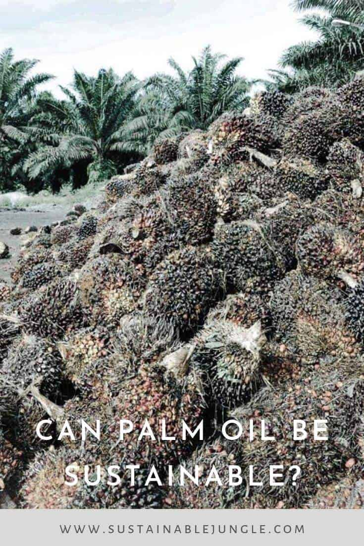 Can palm oil be sustainable? #sustainable #palmoil