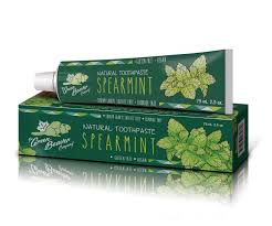 Green-beaver-toothpaste-sustainable-jungle