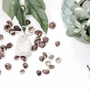 Soap-nuts-sustainable-Jungle