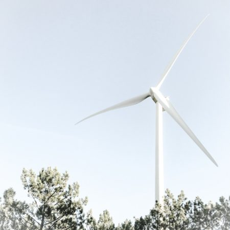 THE RISE AND RISE OF RENEWABLE ENERGY AND THE CASE FOR MAKING THE SWITCH
