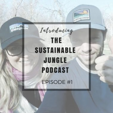 INTRODUCING SUSTAINABLE JUNGLE PODCAST EPISODE 1