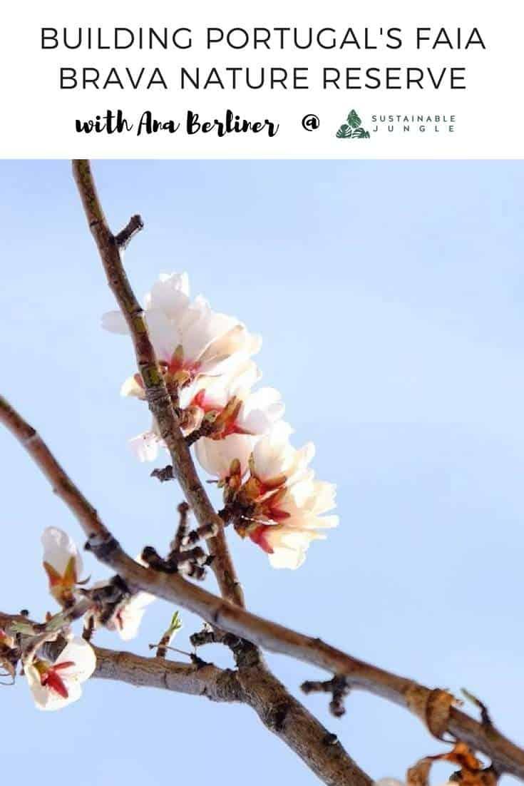 Building Portugal's Faia Brava Nature Reserve from scratch and empowering local communities #rewildingeurope #faiabrava #AnaBerliner #wildlifeportugal #casadacisterna #castelorodrigo #sustainabletravel
