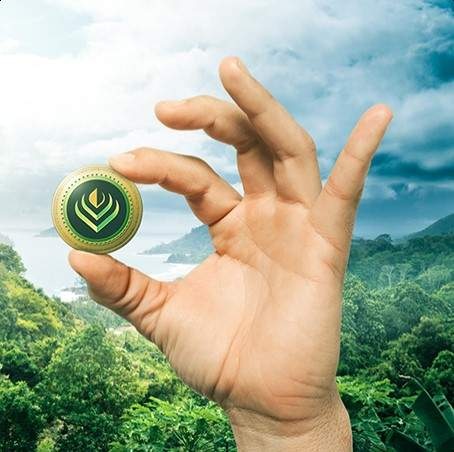 Market-Based Conservation Solutions And How Blockchain Is Taking Them To The Next Level #blockchainforconservation