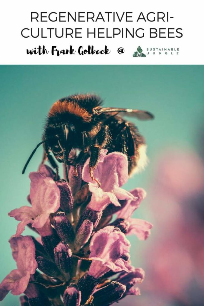 Regenerative agriculture helping bees in california through the most delicious honey mead! #regenerativefarming #savethebees