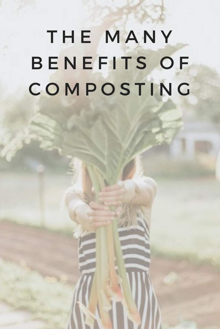 Compost Magic: The Many Benefits Of Composting #benefitsofcomposting #sustainableliving #sustainablejungle