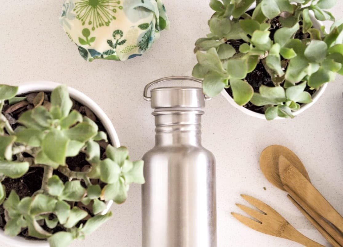 We thought our modest zero waste plan might be worth sharing, considering so many people are getting excited about reducing their waste but may be a little overwhelmed/intimidated by the waste jars of the Zero Waste Elite! #zerowasteplan #guidetogoingzerowaste #sustainablejungle
