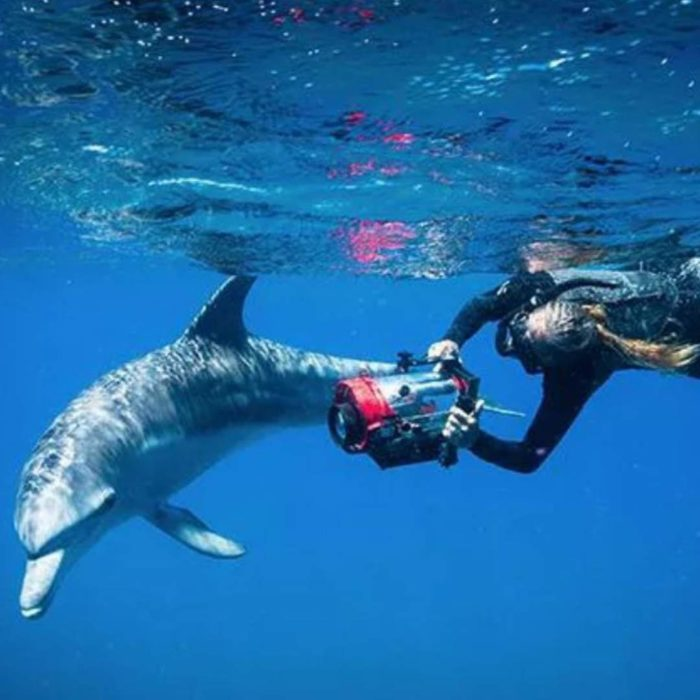 PODCAST #33 · ANGIE GULLAN · FOR THE LOVE OF DOLPHINS, MOZAMBIQUE