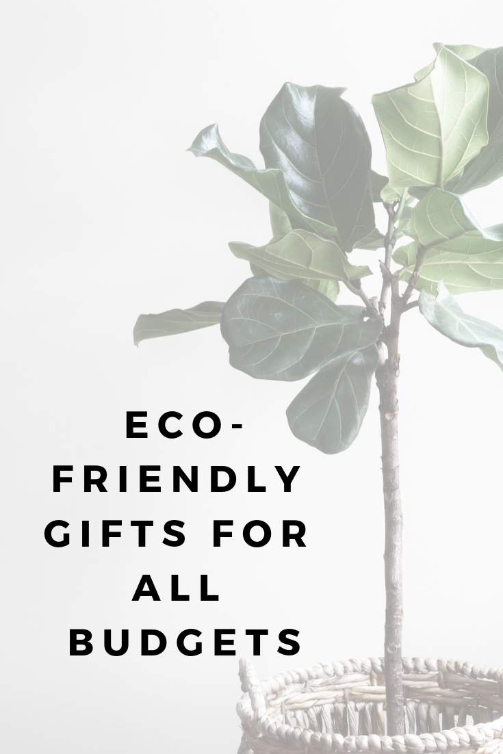 Eco-friendly gifts for all budgets #ecofriendlygifts #sustainablegifts #ethicalgifts