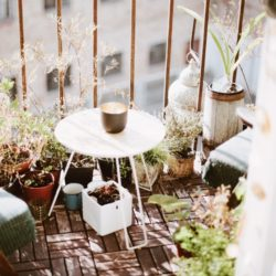 APARTMENT COMPOSTING 101: HOW TO MAKE THE MOST OF ORGANIC WASTE IN A SMALL SPACE