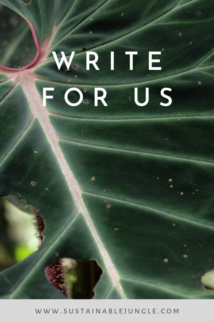 Write for us at Sustainable Jungle: Help us Galvanise Change and Inspire