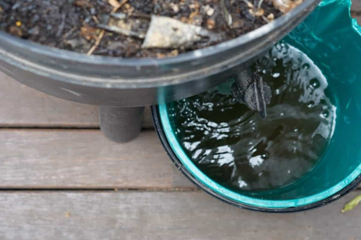 Apartment Gardening - Vermicomposting and Worm Tea