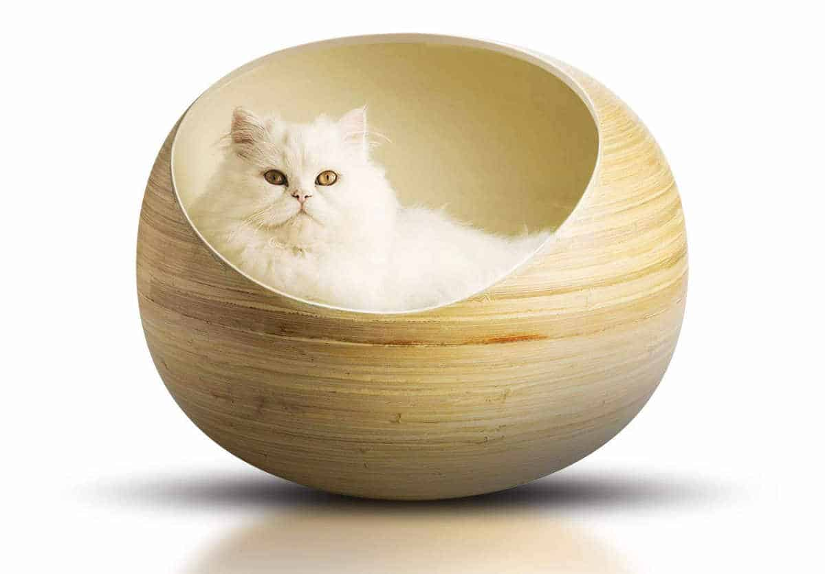 Bamboo Pet Bed Sustainable Jungle