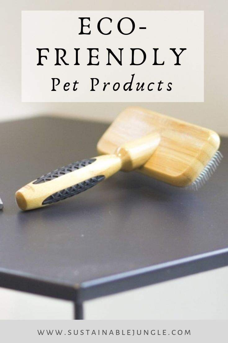 Eco Friendly Pet Products To Make Your Pet More Sustainable One Paw A Time #ecofriendlypet