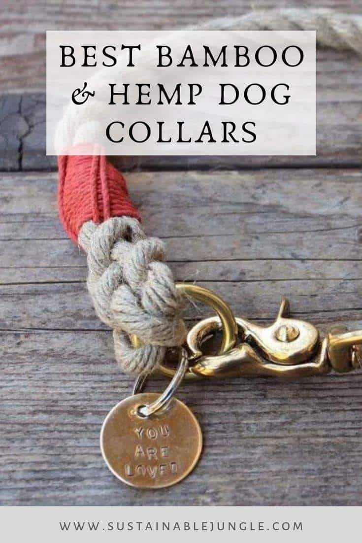 The Best Bamboo Dog Collars Image by Wiggly Woos on Etsy #bamboodog #sustainableliving