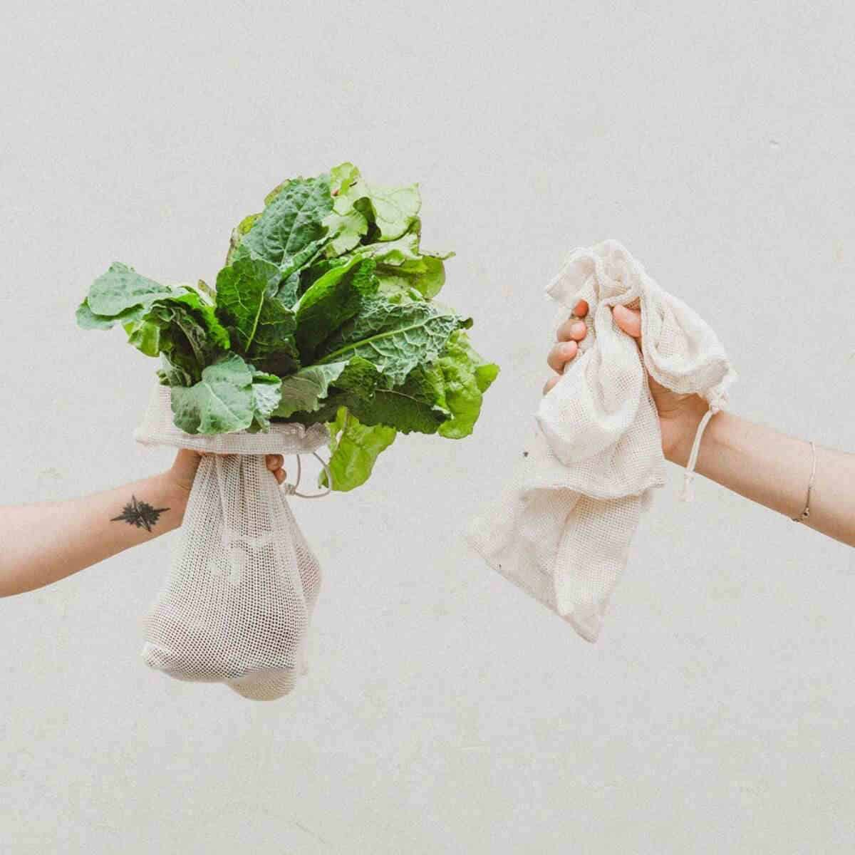 Best Zero Waste & Bulk Online Stores For All Your Package Free Shopping Needs Image by The Wally Shop #zerowaste #onlinestores