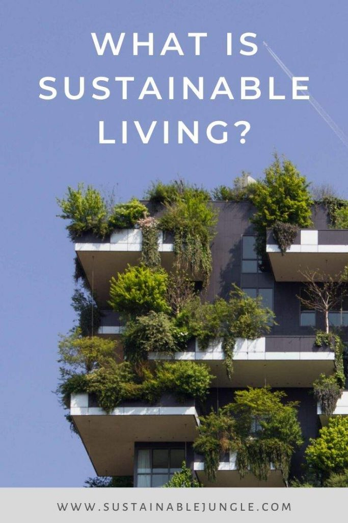 What is Sustainable Living #sustainableliving Photo by Victor Garcia on Unsplash