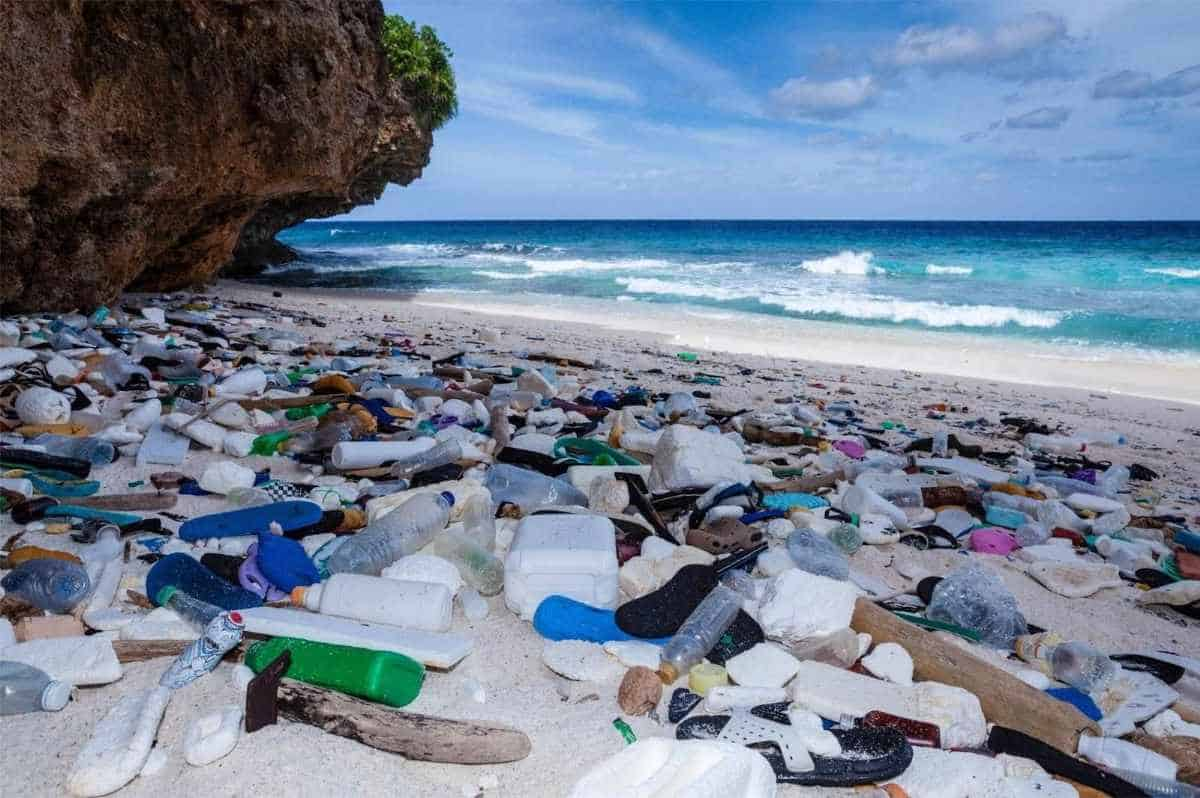 Why Buy Eco Friendly and Recycled Flips Flops Sustainable Jungle #recycledflipflops #ecofriendlyflipflops