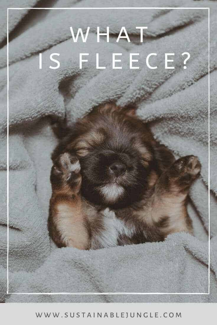 In some areas of the world, we're starting to cozy up for winter which may have us wondering about one thing — what is fleece? Photo by Isabela Kronemberger on Unsplash #sustainablefashion #whatisfleece