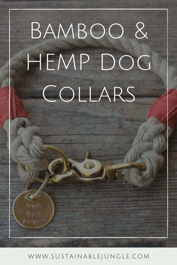 One of the most important pet products that any owner worth his doggy biscuits should care about is a dog collar. But preferably a sustainable and eco-friendly bamboo or hemp pet collar. Image by Wiggly Woos #bamboodogcollar #hempdogcollar #sustainablejungle