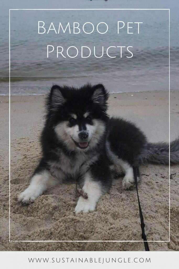 Bamboo pet products are (first of all) a thing! Who knew…They're also are a great way to take some serious steps toward more sustainable pet ownership. #bamboopetproducts #sustainablejungle