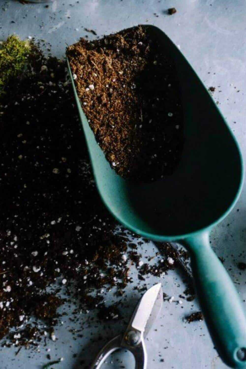 Compost Magic The Many Benefits Of Composting #benefitsofcomposting #sustainableliving #sustainablejungle