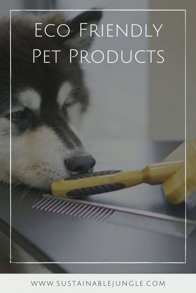 For this list, we sought out the best sustainable pet products on the market. This means looking for things made of natural and organic components that are safe for both pets and the planet #ecofriendlydogproducts #sustainablejungle