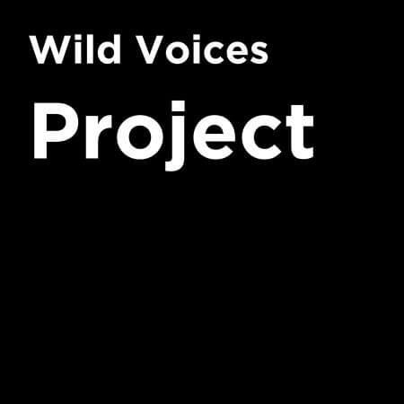 With climate change and biodiversity loss happening at an alarming rate, it's high time we tune in to conservation issues, what better way than to start subscribing to some inspiring, educational and environmental podcasts out there. Image by Wild Voices Project #environmentalpodcasts #sustainablejungle