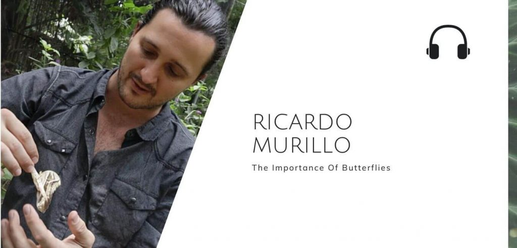 The Importance Of Butterflies with Ricardo Murillo on The Sustainable Jungle Podcast #sustainablejungle