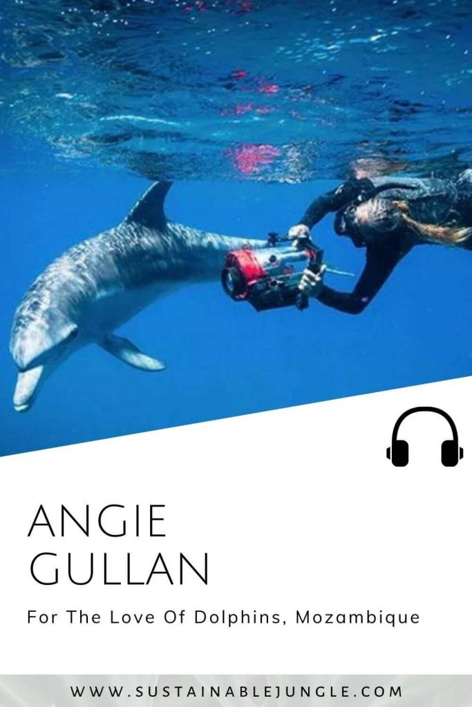 For the love of dolphins with Angie Gullan on the Sustainable Jungle Podcast #sustainablejungle