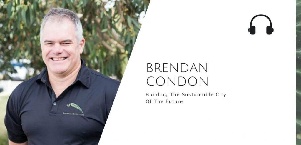 Building the sustainable city of the future with Brendan Condon on the Sustainable Jungle Podcast #sustainablejungle