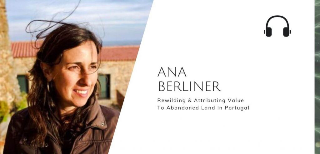 Rewilding & Attributing Value To Abandoned Land In Portugal with Ana Berliner on the Sustainable Jungle Podcast #sustainablejungle