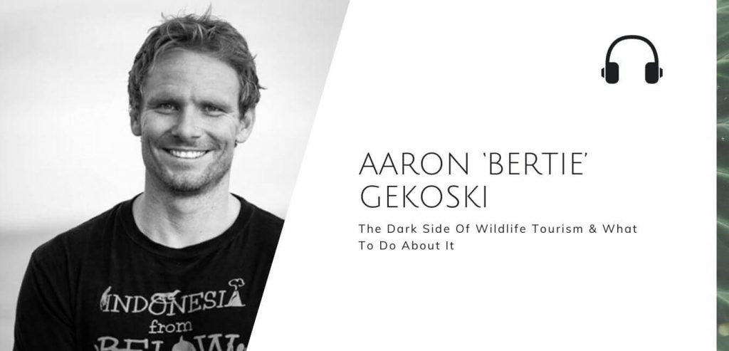 The Dark Side Of Wildlife Tourism And What To Do About It with Aaron Gekoski on the Sustainable Jungle Podcast #sustainablejungle