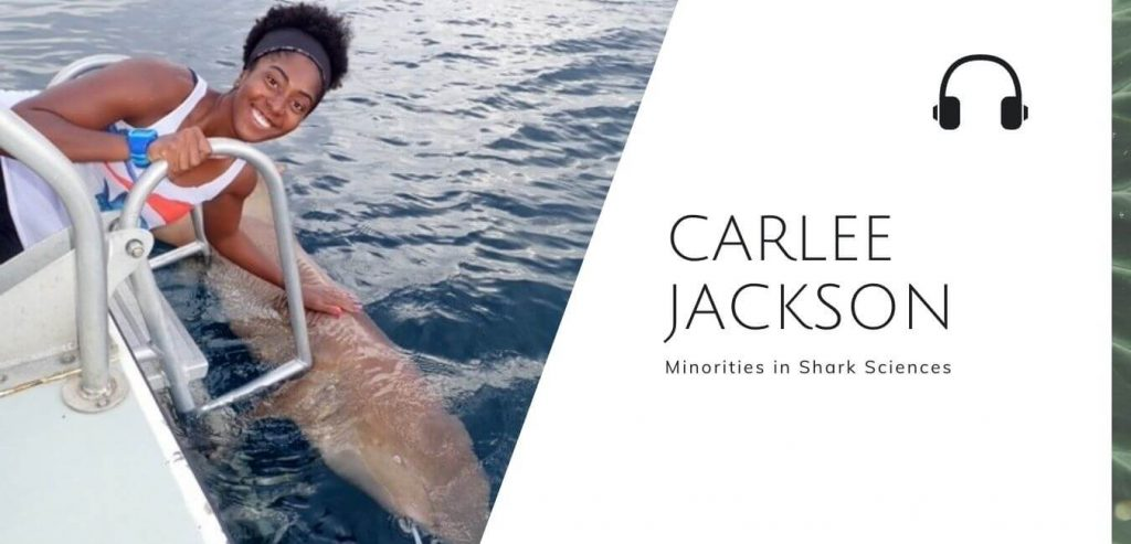 Minorities in Shark Sciences with Carlee Jackson on the Sustainable Jungle Podcast  #blackinnature #minoritiesinsharkscience #sustainablejungle