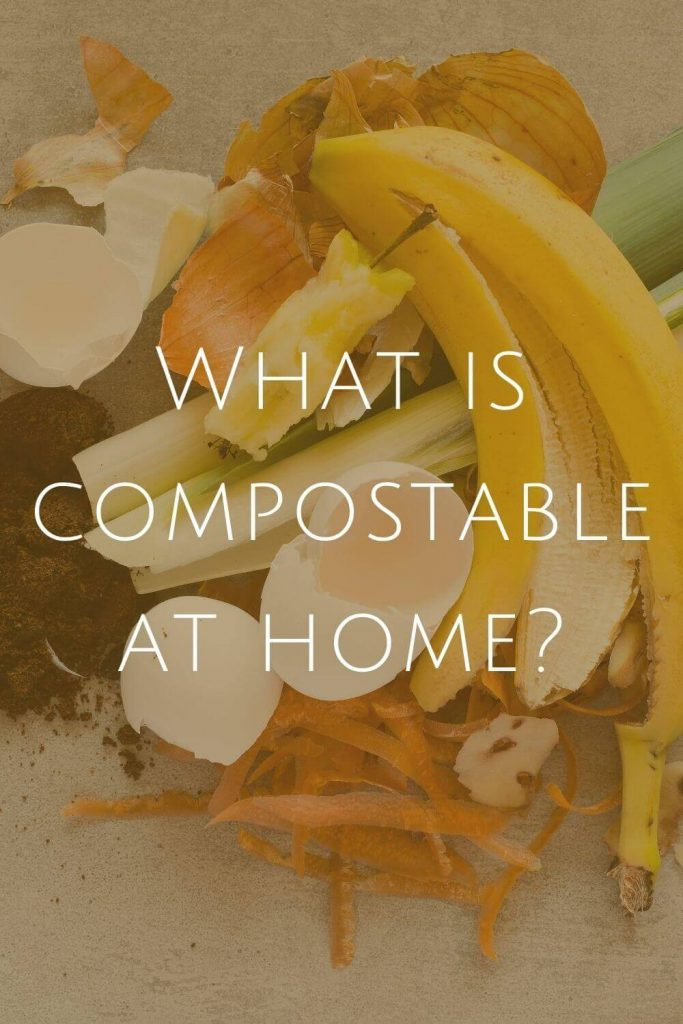 What is Compostable at Home at Sustainable Jungle #zerowaste #sustainablejungle