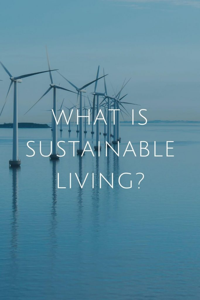 What is Sustainable Living at Sustainable Jungle #zerowaste #sustainablejungle