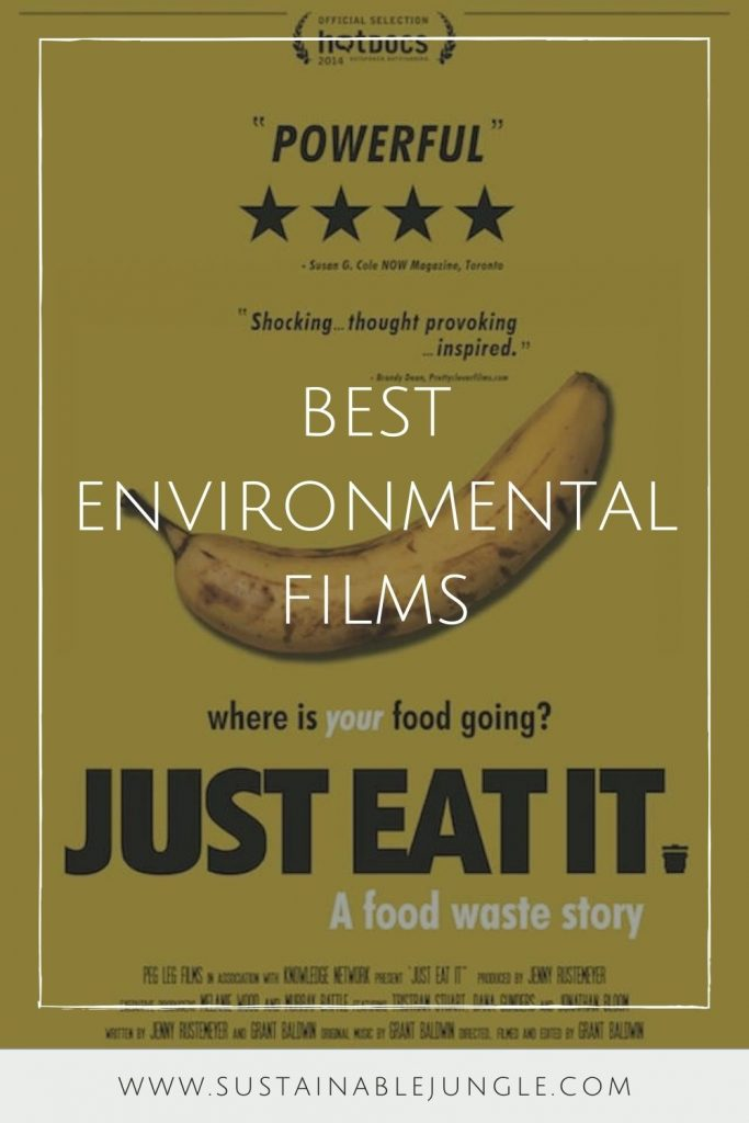 For that extended staycation you never planned on, here's our list of the best environmental films. #environmentalfilms #bestenvironmentalfilms #sustainablejungle