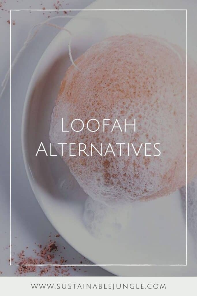 Why scrub with synthetic materials when there are sustainable loofah alternatives that are just as effective and affordable (and won't result in microplastic pollution)?  Image by Smile Boutiques #loofahalternatives #ecofriendlyloofah #nonplasticloofah #sustainableloofah #sustainablejungle