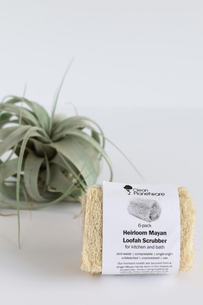 Why scrub with synthetic materials when there are sustainable loofah alternatives that are just as effective and affordable (and won't result in microplastic pollution)?  Image by Well Earth Goods #loofahalternatives #ecofriendlyloofah #nonplasticloofah #sustainableloofah #sustainablejungle