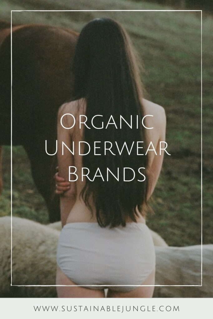 Don't get your panties in a bunch—here's a brief (pun intended) list of the best organic underwear brands for you. Image by Pansy #organicunderwear #organicunderwearbrands #sustainablejungle