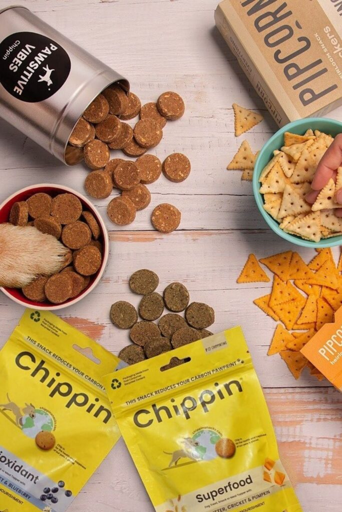 Attention all conscious pet owners: you can help change the world, one sustainable kibble at a time with these eco friendly pet food options. Image by Chippin #ecofriendlypetfood #sustainablepetfood #sustainablejungle