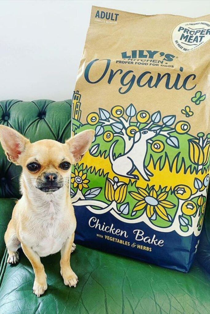 Attention all conscious pet owners: you can help change the world, one sustainable kibble at a time with these eco friendly pet food options. Image by Lily's Kitchen #ecofriendlypetfood #sustainablepetfood #sustainablejungle