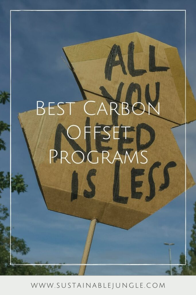 We've taken a deep dive into the world of offsets, uncovering the best carbon offset providers that will legitimately reduce your footprint. Photo by Etienne Girardet on Unsplash #bestcarbonoffsetprograms #bestcarbonoffsetproviders #sustainablejungle
