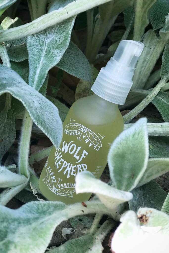 Following our noses, we were able to find non toxic perfume brands that make use of Earth's bounty without spending too much time in the laboratory. Image by Fat and The Moon #nontoxicperfume #naturalperfume #sustainablejungle