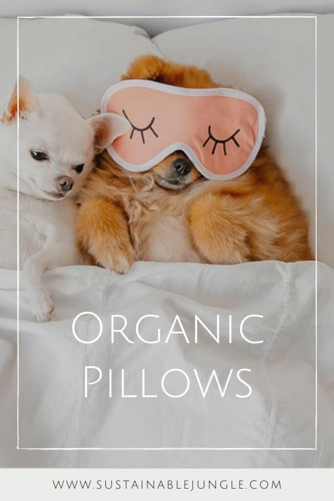 You don't need to start a (pillow) fight, choose organic pillows to give yourself the best sustainable slumber... Image by SOL Organics #organicpillows #bestorganicpillows #naturalorganicpillows #organiclatexpillows #organicdownpillows
