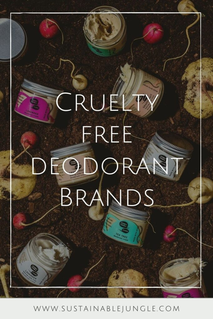 Want cruelty free deodorant that's good for you, better for our planet, and better for all beings on Earth? No sweat! Image by Meow Meow Tweet #crueltyfreedeodorant #sustainablejungle