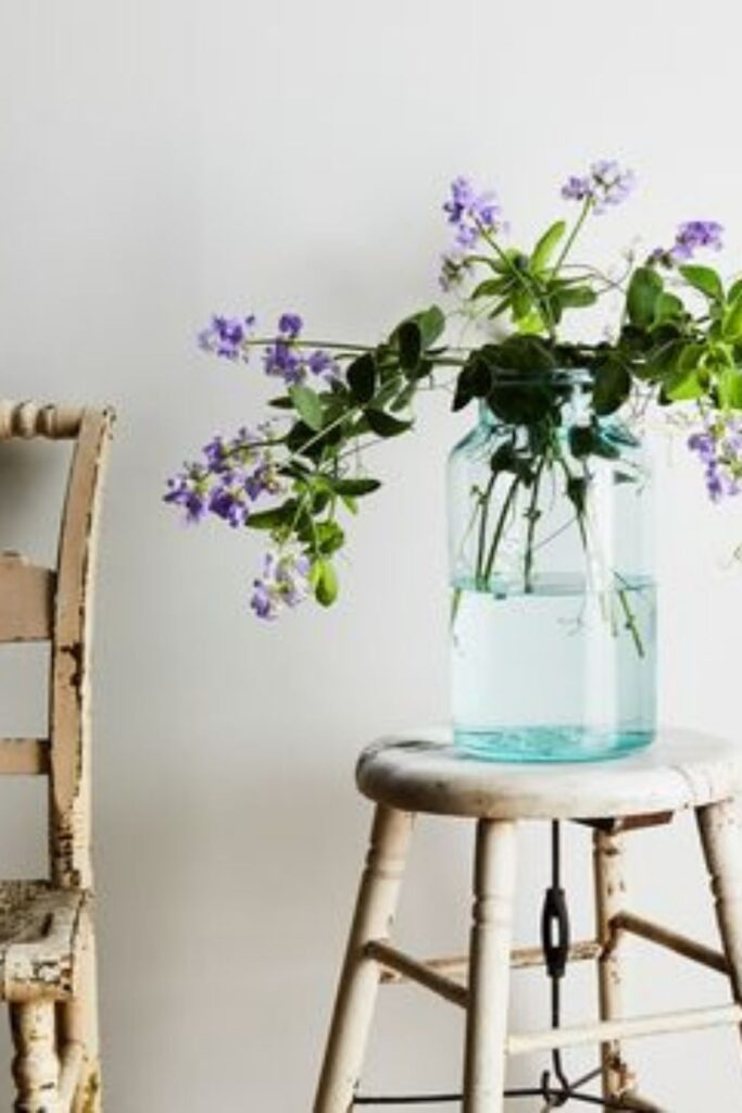 Ethical Online Shopping: Eco Stores to Shop Sustainably Image by Food52 #ethicalonlineshopping #ethicalonlineshops #sustainablejungle